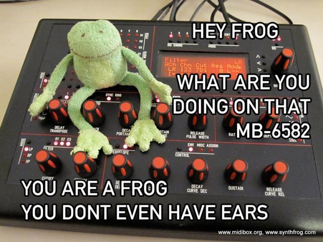 Frog on MB-6582