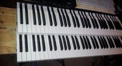 keyboard shots(cropped)